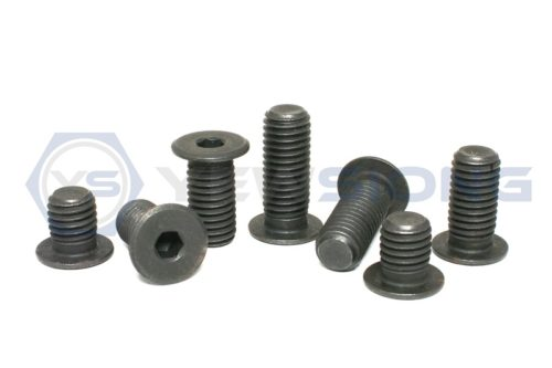 025 Extra Low Head Socket Cap Screw